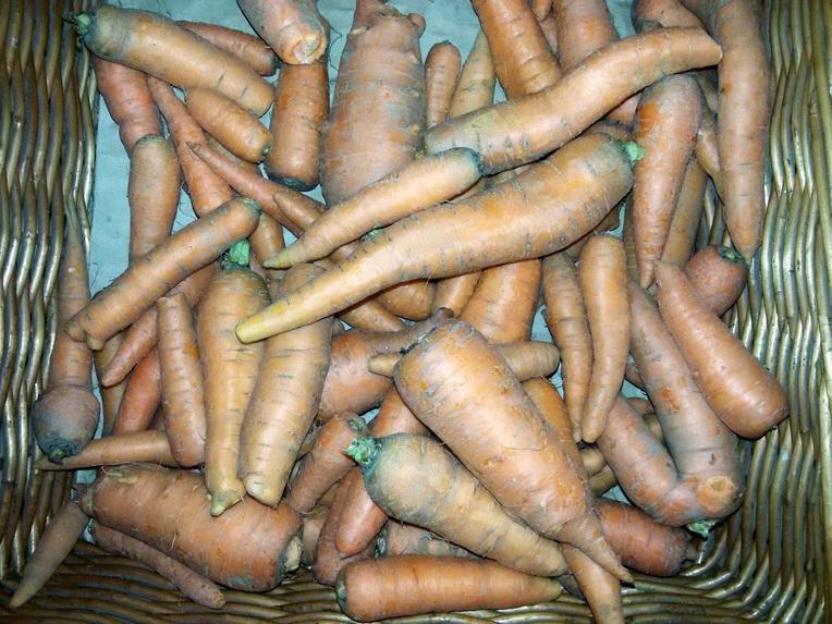 Šargarepa 1kg