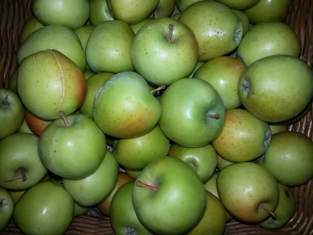 Organska jabuka  1kg