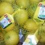Organski limun